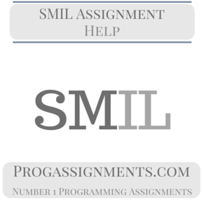 SMIL Assignment Help