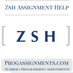 Zsh Assignment Help